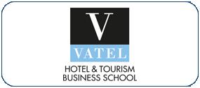 logo-vatel